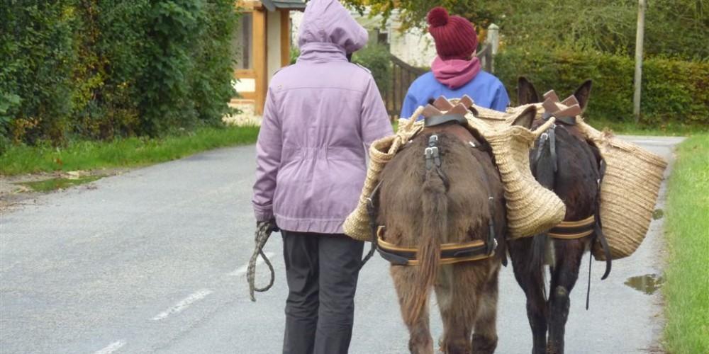 Randonnées avec ânes bâtés