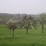 paysages Bec-thomas