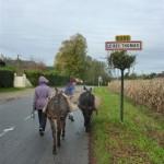 randonnées ânes bâtés